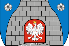 logo-gmina-boleslaw