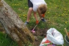 Ogrodnik Mikołaj podczas pracy.