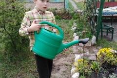 Ogrodnik Staś podlewa roślinki.