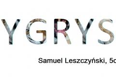 1. Leszczyński Samuel, Tygrys