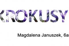 2. Magdalena Januszek