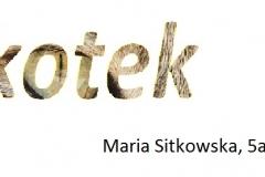26. Maria Sitkowska