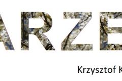 29. Krzysztof Krawczyk