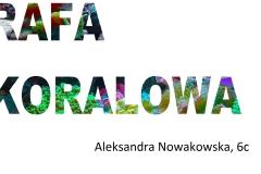 9. Aleksandra Nowakowska